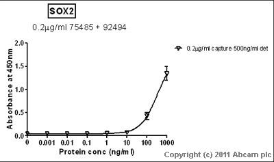 Sandwich ELISA - SOX2 antibody [57CT23.3.4] (ab75485)