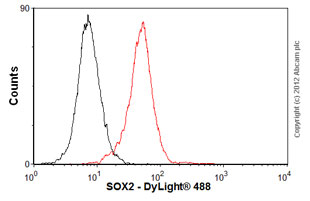Flow Cytometry - Anti-SOX2 antibody [57CT23.3.4] (ab75485)