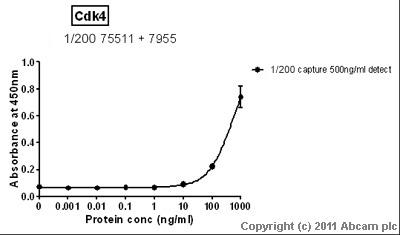 Sandwich ELISA - Anti-Cdk4 antibody [AF10A4] (ab75511)