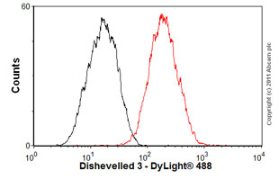 Flow Cytometry-Anti-Dishevelled 3 antibody [EP1991Y](ab76081)