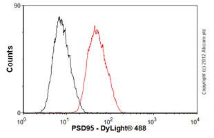 Flow Cytometry-Anti-PSD95 antibody [EP2652Y](ab76115)