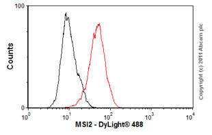 Flow Cytometry-Anti-MSI2 antibody [EP1305Y](ab76148)