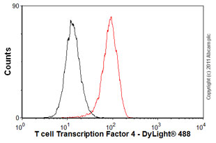 Flow Cytometry - Anti-TCF7L2 antibody [EP2033Y] (ab76151)