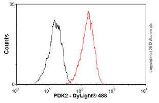 Flow Cytometry - Anti-PDK2 antibody [EP1947Y] (ab76152)