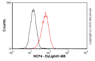 Flow Cytometry-Anti-NCF4 antibody [EP2142Y](ab76158)