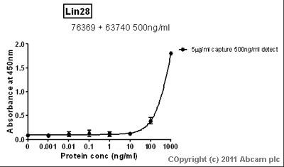 Sandwich ELISA - Lin28 antibody [6D1F9] (ab76369)