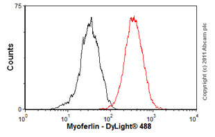 Flow Cytometry - Anti-Myoferlin antibody [7D2] (ab76746)