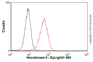 Flow Cytometry - Anti-Hexokinase II antibody (ab76959)