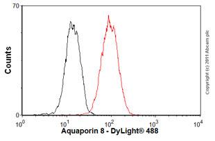 Flow Cytometry-Anti-Aquaporin 8 antibody(ab77198)