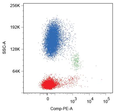 Flow Cytometry - Anti-CD86 antibody [BU63] (Phycoerythrin) (ab77226)