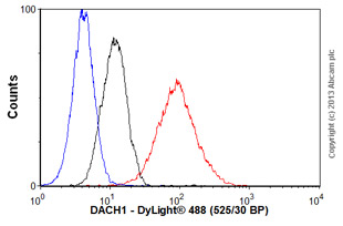 Flow Cytometry-Anti-DACH1 antibody [EPR2841Y](ab77234)