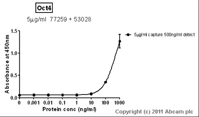 Sandwich ELISA - Anti-Oct4 antibody (ab77259)