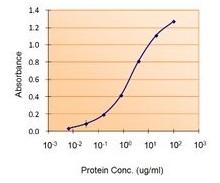 Sandwich ELISA - Anti-Lactoferrin antibody (ab77548)