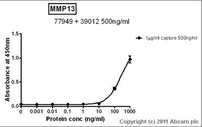 Sandwich ELISA - MMP13 antibody [181-15A12] (ab77949)