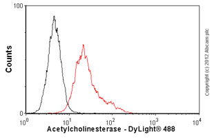 Flow Cytometry-Anti-Acetylcholinesterase antibody [AE-2](ab77959)