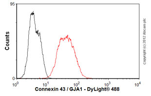 Flow Cytometry-Anti-Connexin 43 / GJA1 antibody [4E6.2](ab79010)