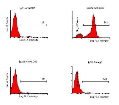 Flow Cytometry - Rat monoclonal [SB84a]  Secondary Antibody to Mouse IgG2a - gamma chain (FITC) (ab79092)