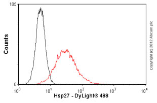 Flow Cytometry-Anti-Hsp27 antibody [8A7](ab79868)