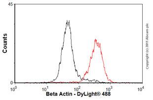 Flow Cytometry-Anti-beta Actin antibody [mAbcam 8224] - Loading Control(ab8224)