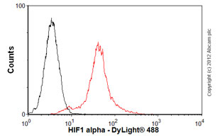 Flow Cytometry - Anti-HIF-1-alpha [ESEE122] antibody (ab8366)