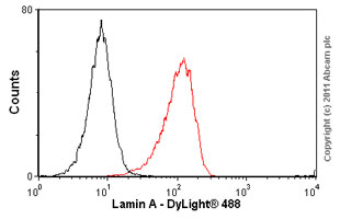Flow Cytometry-Lamin A antibody [133A2] - Nuclear Envelope Marker(ab8980)