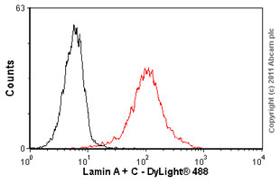 Flow Cytometry-Lamin A + C antibody [131C3] - Nuclear Envelope Marker(ab8984)