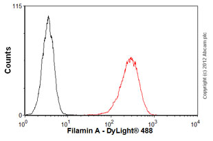 Flow Cytometry - Anti-Filamin antibody [FLMN01] (ab80837)