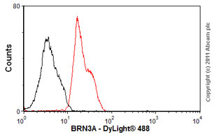 Flow Cytometry-Anti-BRN3A antibody [EP1972Y](ab81213)