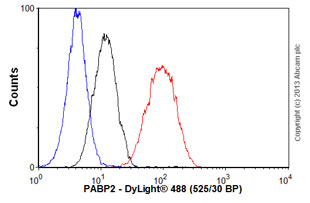 Flow Cytometry-Anti-PABP2 antibody [EP3001Y](ab81224)