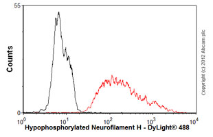 Flow Cytometry - Anti-Hypophosphorylated Neurofilament H antibody [N52] (ab82259)