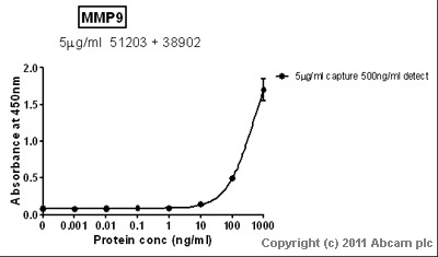 Sandwich ELISA - MMP9 protein (His tag) (ab82955)