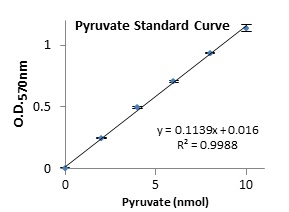 Functional Studies - Pyruvate Kinase (PK) Assay Kit (ab83432)