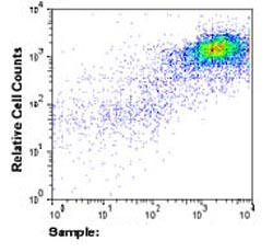 Flow Cytometry - NG2 antibody (ab83508)