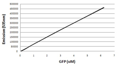 Functional Studies - GFP protein (Active) (ab84191)