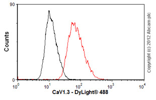 Flow Cytometry-Anti-CaV1.3 antibody [S38-8](ab84811)