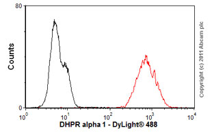 Flow Cytometry - Anti-CACNA1C [S57-46] antibody (ab84814)