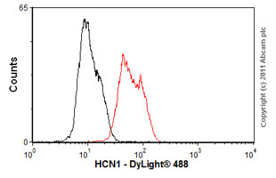 Flow Cytometry-Anti-HCN1 antibody [S70-28](ab84816)