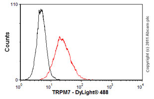 Flow Cytometry-Anti-TRPM7 antibody [S74-25](ab85016)