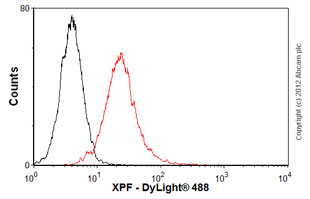 Flow Cytometry-Anti-XPF antibody [3F2/3](ab85140)