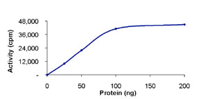 Functional Studies - TrkC protein (Active) (ab85274)