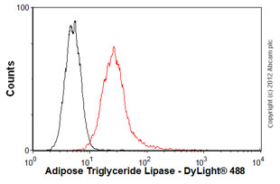 Flow Cytometry - Anti-Adipose Triglyceride Lipase antibody [AT2G2] (ab85348)
