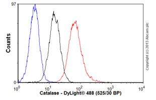 Flow Cytometry-Anti-Catalase antibody(ab88067)