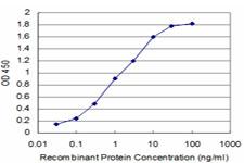 ELISA - PU.1/Spi1 antibody (ab88082)