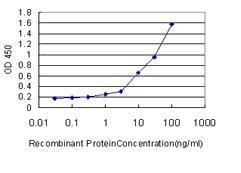 ELISA - TLR9 antibody (ab88101)