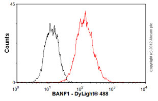 Flow Cytometry - Anti-BANF1 antibody (ab88464)