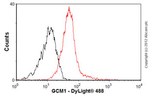 Flow Cytometry - Anti-GCM1 antibody (ab88748)