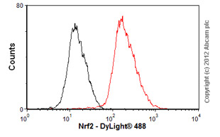 Flow Cytometry-Anti-Nrf2 antibody(ab89443)