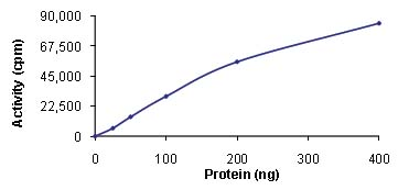 Functional Studies - Mps1 protein (Active) (ab89589)