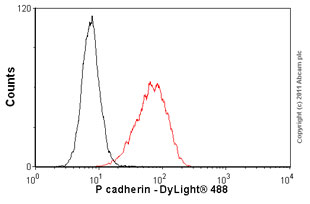 Flow Cytometry - Anti-P cadherin antibody [MM0508-9V11] (ab89900)