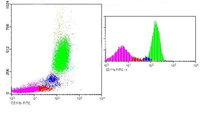 Flow Cytometry - CD11b antibody [DCIS1/18] (FITC) (ab90886)